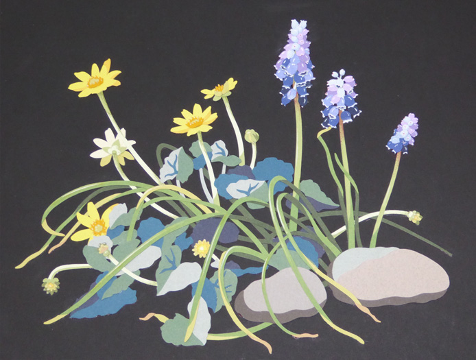 grape-hyacinths-and-lesser-celandines-resized