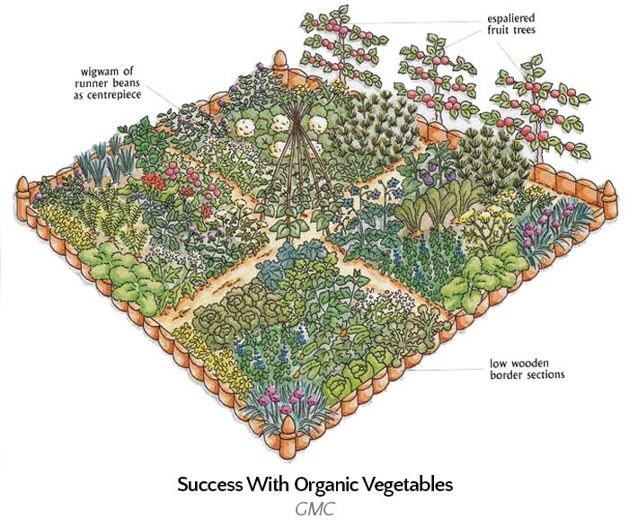 3d-veg-garden