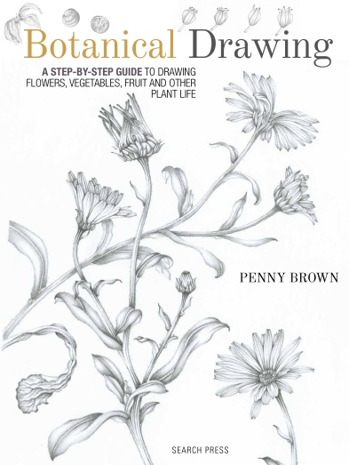 Botanical Drawing Cover